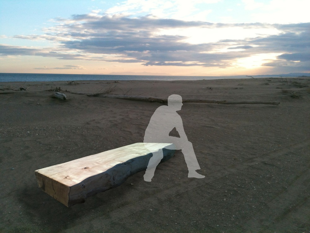Driftwood benches