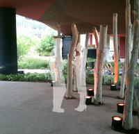 Location de bois flotté, et autres éléments naturels