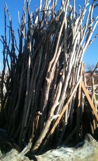 Location de branches de bois flotté