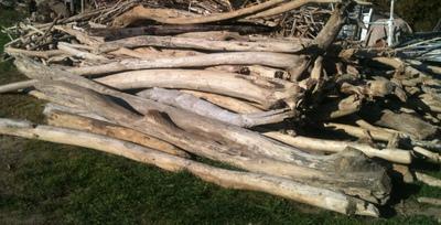 Location de troncs de bois flotté