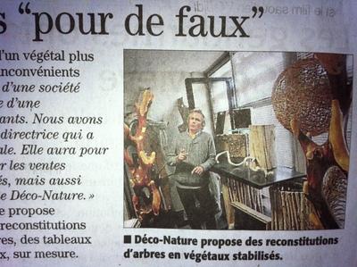 Interview de Midi Libre sur l'entreprise Déco-Nature