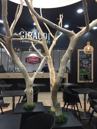 arbres morts pour la décoration d'un stand