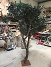 olivier stabilisé de 3m50