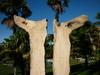 sculpture papillon en bois flotté