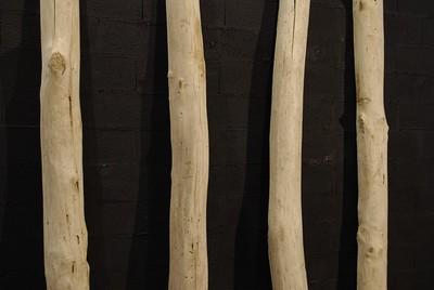 Demi tronc de bois flotté