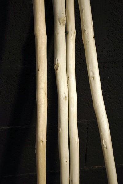 Branches de bois écorcées