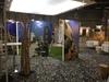 Décoration du stand Ametis à Nantes pour un salon professionnel