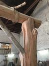 Pergola en bois flotté à Toulouse