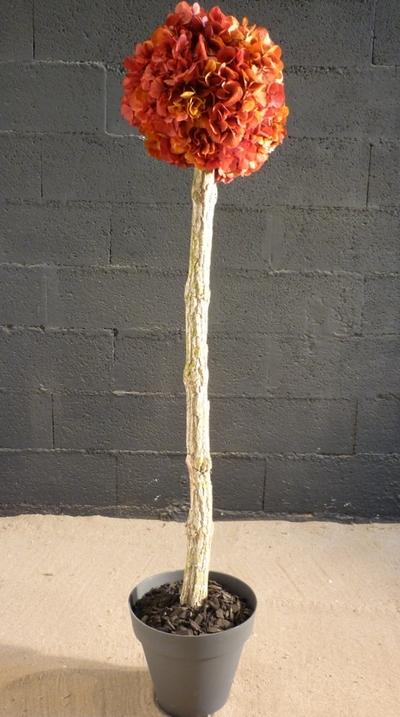 Arbuste hortensia rose/jaune