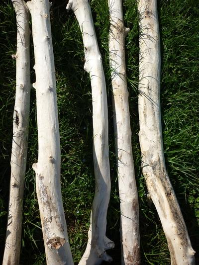 Branche de bois flott de 1m70 2m de 10cm 13cm de diam tre for Achat branche bois flotte