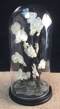 Ikebana: inflorescence de palmier et orchidées