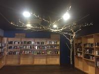 Un arbre en bois flotté dans une librairie