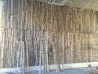 750 birch trunks to cover the walls of a non-profit, architect Mrs. Jouveaux