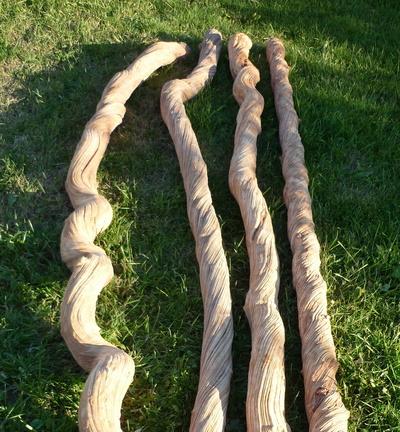 Lianes guimauve en 2m et 8 à 10cm de diamètre