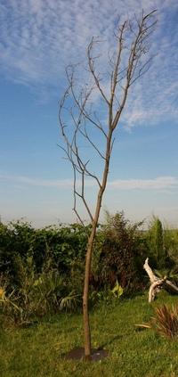 arbre mort ref 201