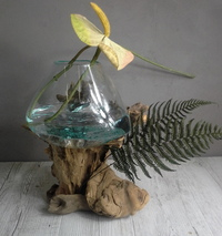Driftwood and blown glass vase ref 5