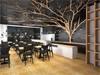 arbre en bois flotté dans un restaurant