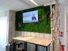 mur végétaux stabilisés et paravents en bois flotté et en troncs de bouleaux