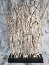 Paravent de branches de bouleaux éclairées