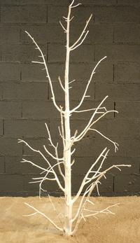 arbre mort ref 222