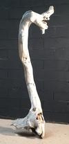 sculpture en bois flotté 4171